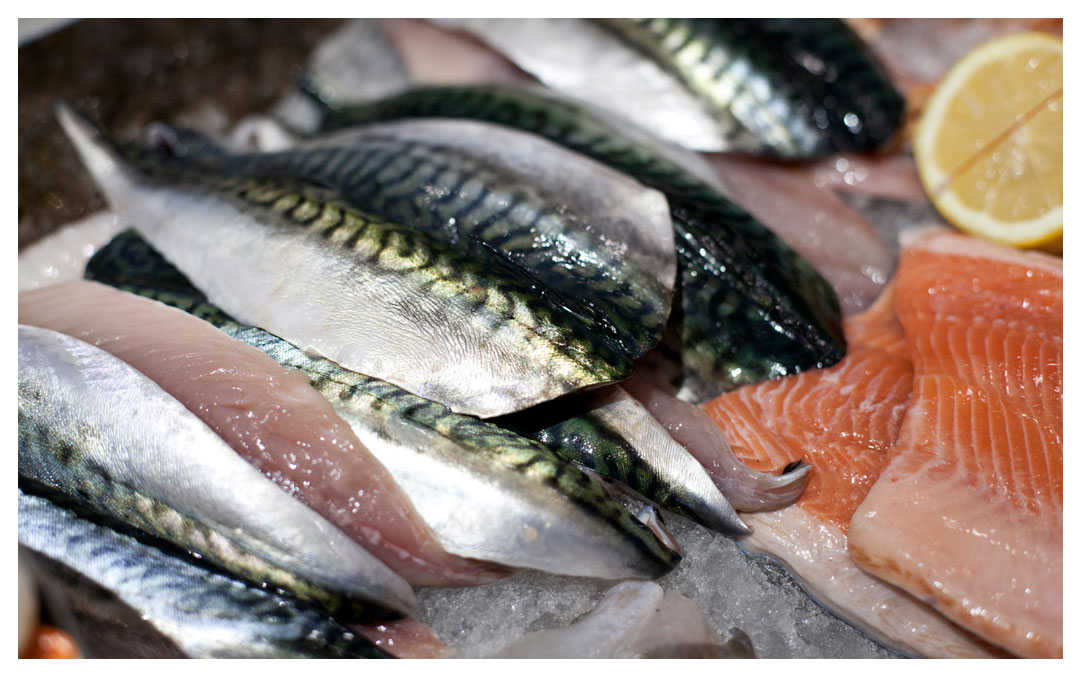 Fresh fish, come and get 'em.